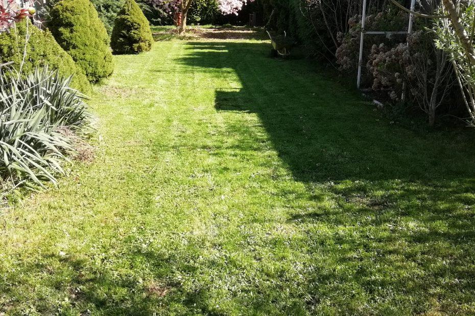 Pokosený trávnik
